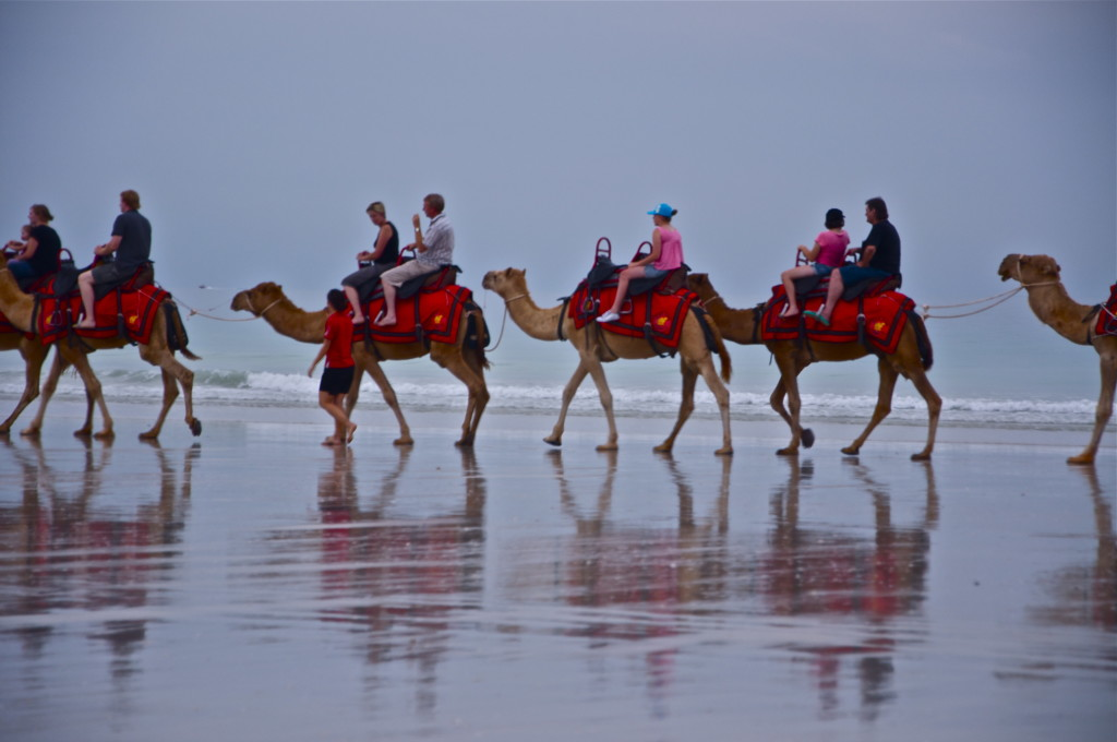Riding the camels on The Broome Beach.